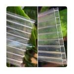 Polycarbonate Greenhouse Glazing